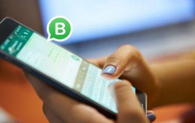 Los catalogos de Whatsapp Business